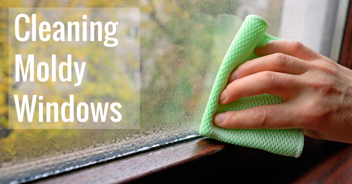 Cleaning Window Mold Off Gl Sill Or Frame