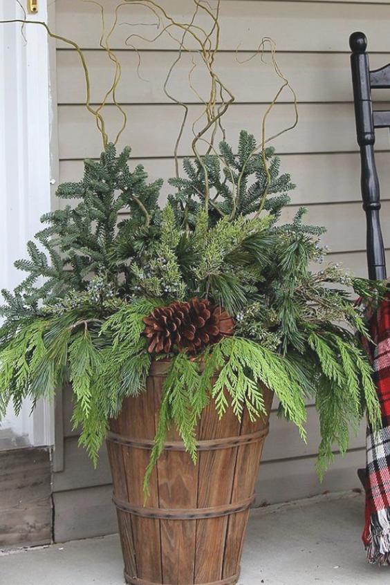 pine-arrangement